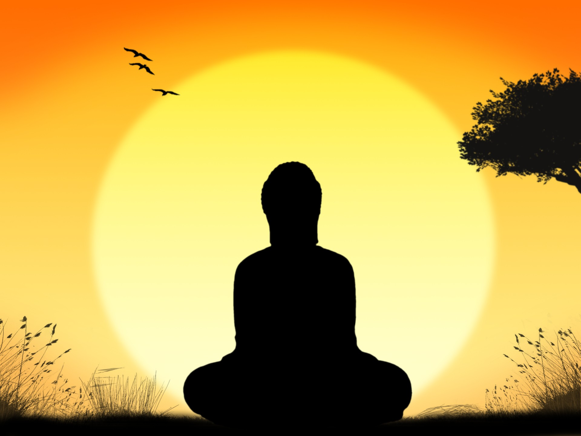 Why Do People Choose to Meditate in the Morning?